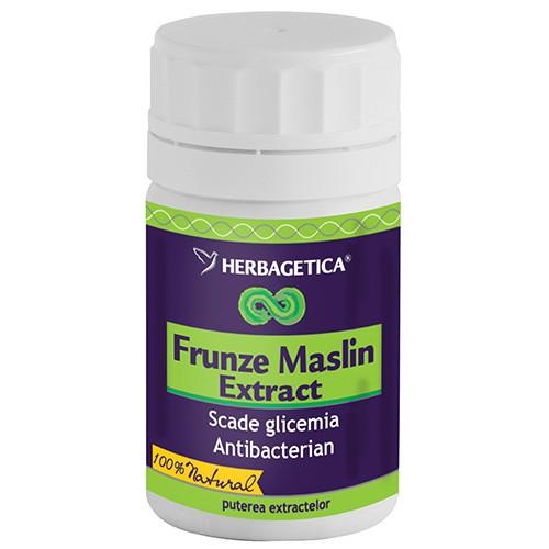 frunze_1