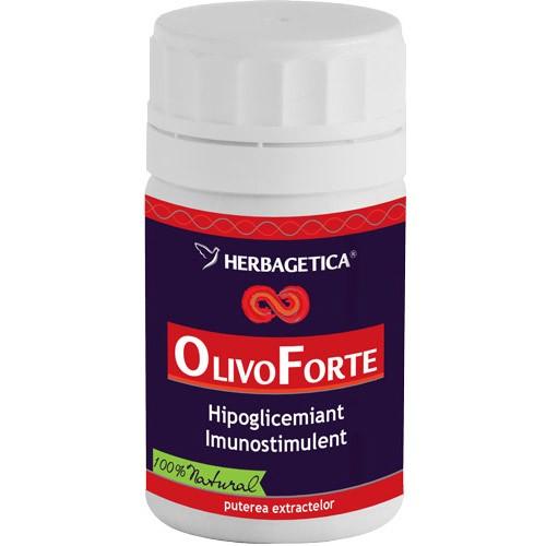olivo-forte2