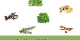 Mirodenii și rolul lor terapeutic