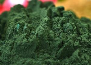 Herbagetica-Alga-AFA--